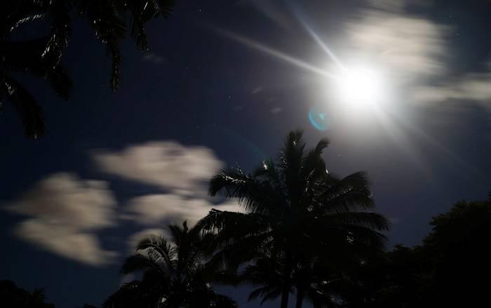 Palmen, Sonne, Wolken