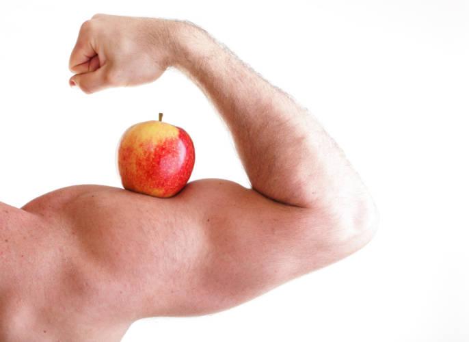 muskelaufbau sport ernährung